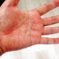 日本人の手は繊細。気功の手