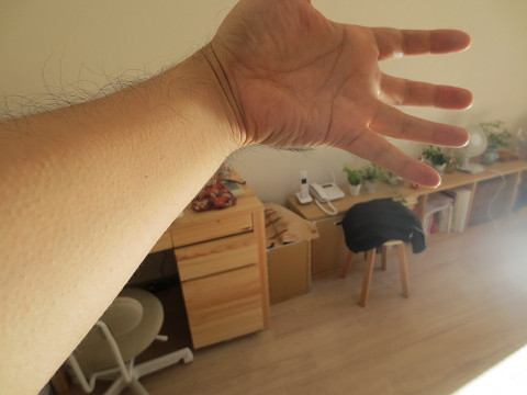 気の手 鳥肌2