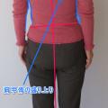 リキみがなくなれば、臀部が引き締まり、脚が長く見えます。