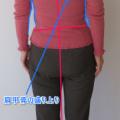 慢性の 肩こり と肩甲骨。脇の締めすぎに注意!