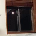 家でお月見してます。