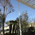 恵比寿の縁起の良い整体。花と空で良い気が満ちています。アトレ空中花園