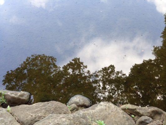 160726水面の美しさ2