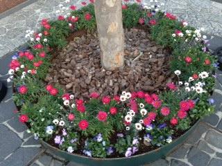 ガーデンプレイス花壇