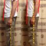 肩甲骨、背骨、骨盤が整体術の根幹